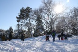 Kids were sleighing on the Cedar's hill the whole weekend