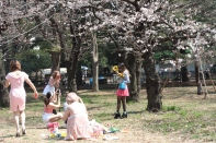 teenagers in Yoyogi Park