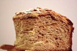 sourdough colomba texture